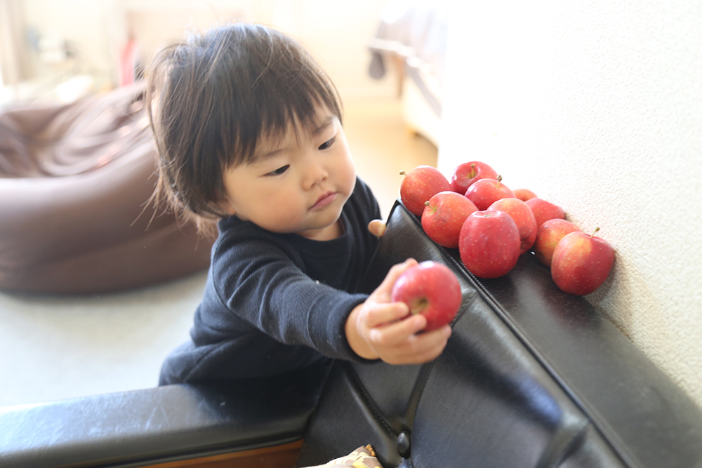 20151018杏とりんごIMG_7753